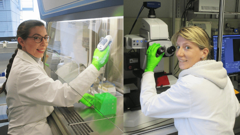 Istraživači i stomatolozi udružuju snage kako bi produžili trajnost zubnih ispuna